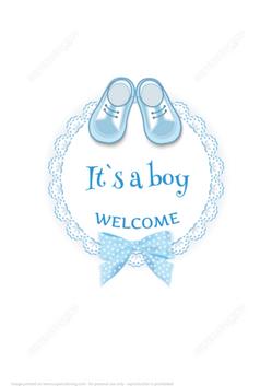 Babyshowerarrivalcarditsaboypapercr